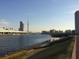 汐入公園からスカイツリー