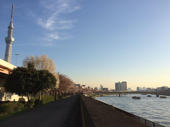 隅田川花火大会の銅像堀公園周辺スポットの画像!場所取りやアクセスは?
