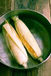 corn04
