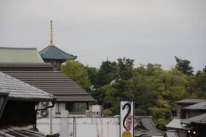 表参道から三重塔を見る
