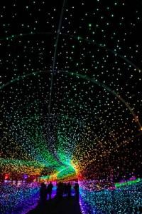東京ドイツ村 虹のトンネル