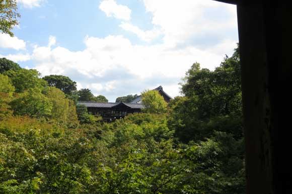 臥雲橋から緑