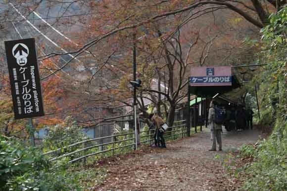 kyoto-yosino-4