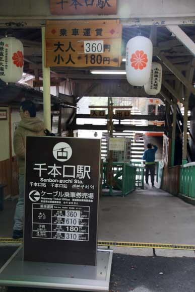 kyoto-yosino-5