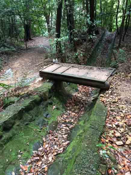 trail-7