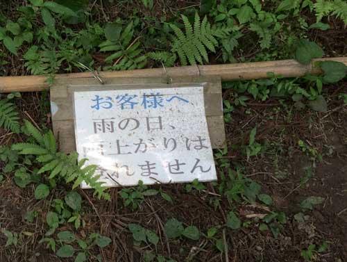 2016ajisaiyasiki-4