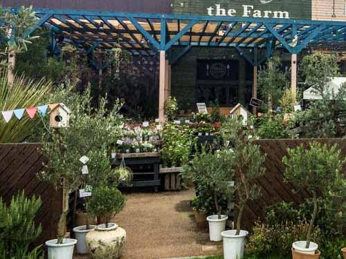 the Farm UNIVERSAL CHIBA-34