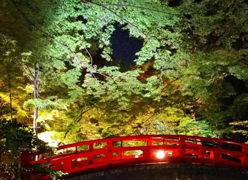 北野天満宮のもみじ苑ライトアップ2016・境内夜間特別拝観に行ってきた!